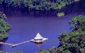 Amazon, near Manaus